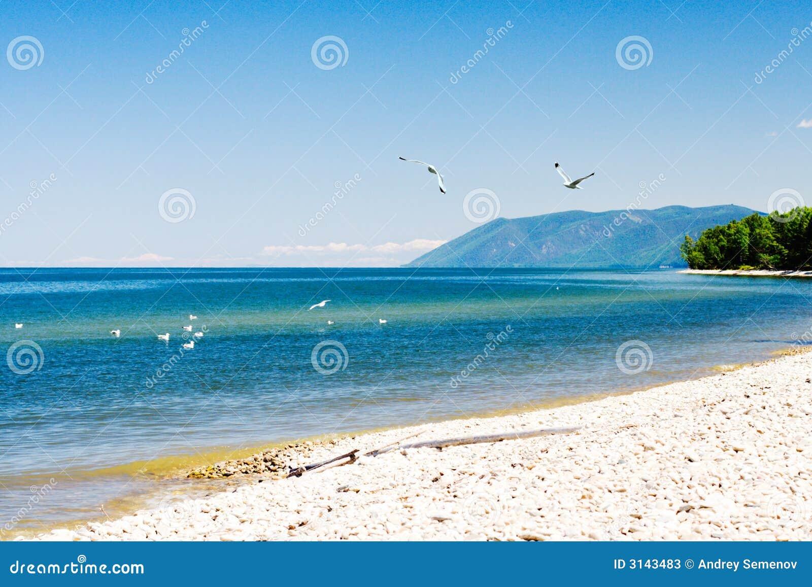 Riva del lago del Baikal