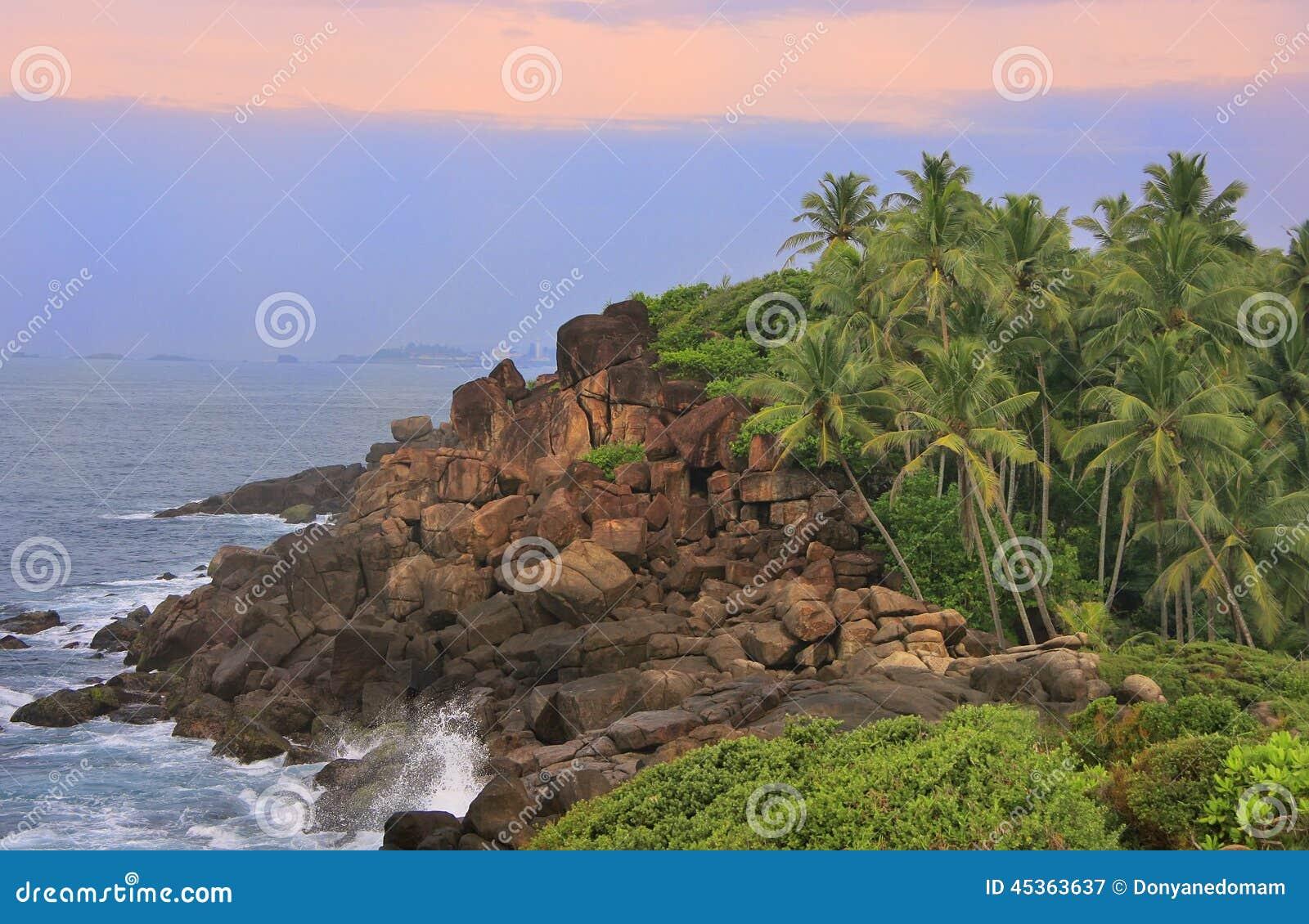 Rivage rocheux avec des palmiers, Unawatuna, Sri Lanka