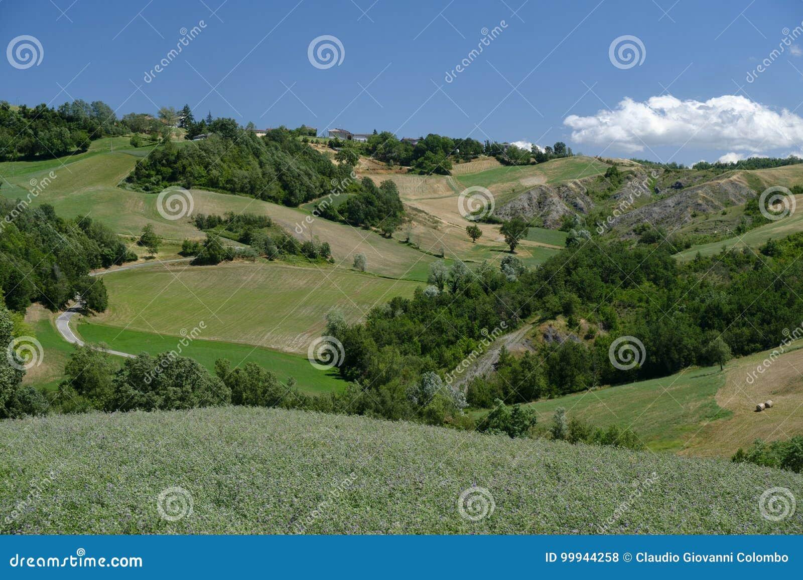 Rivalta di Lesignano Parma, Italien: sommarlandskap