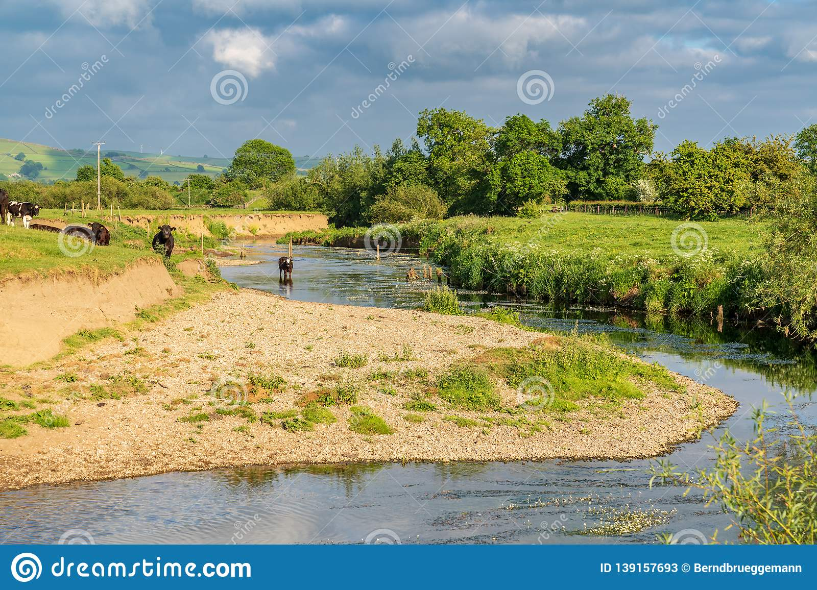 River Aire, near Skipton, North Yorkshire, England, UK