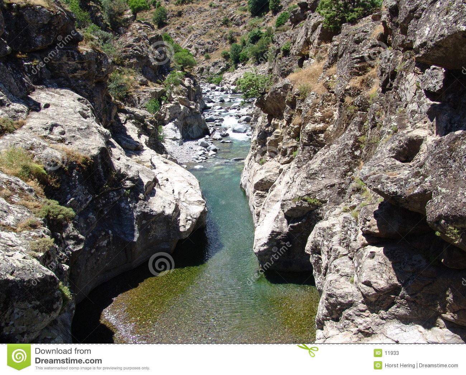The river Asco in Corsica