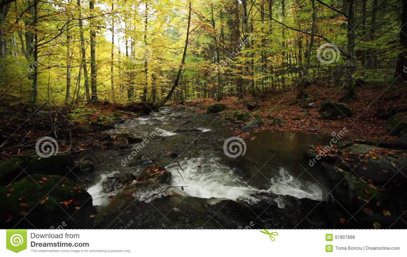 River In Autumn With Nature Sounds Stock Footage - Video of rocks