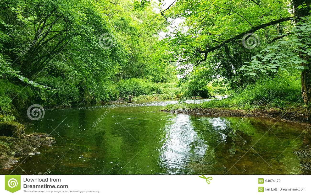 River Avon . Running of dartmoor devon.uk