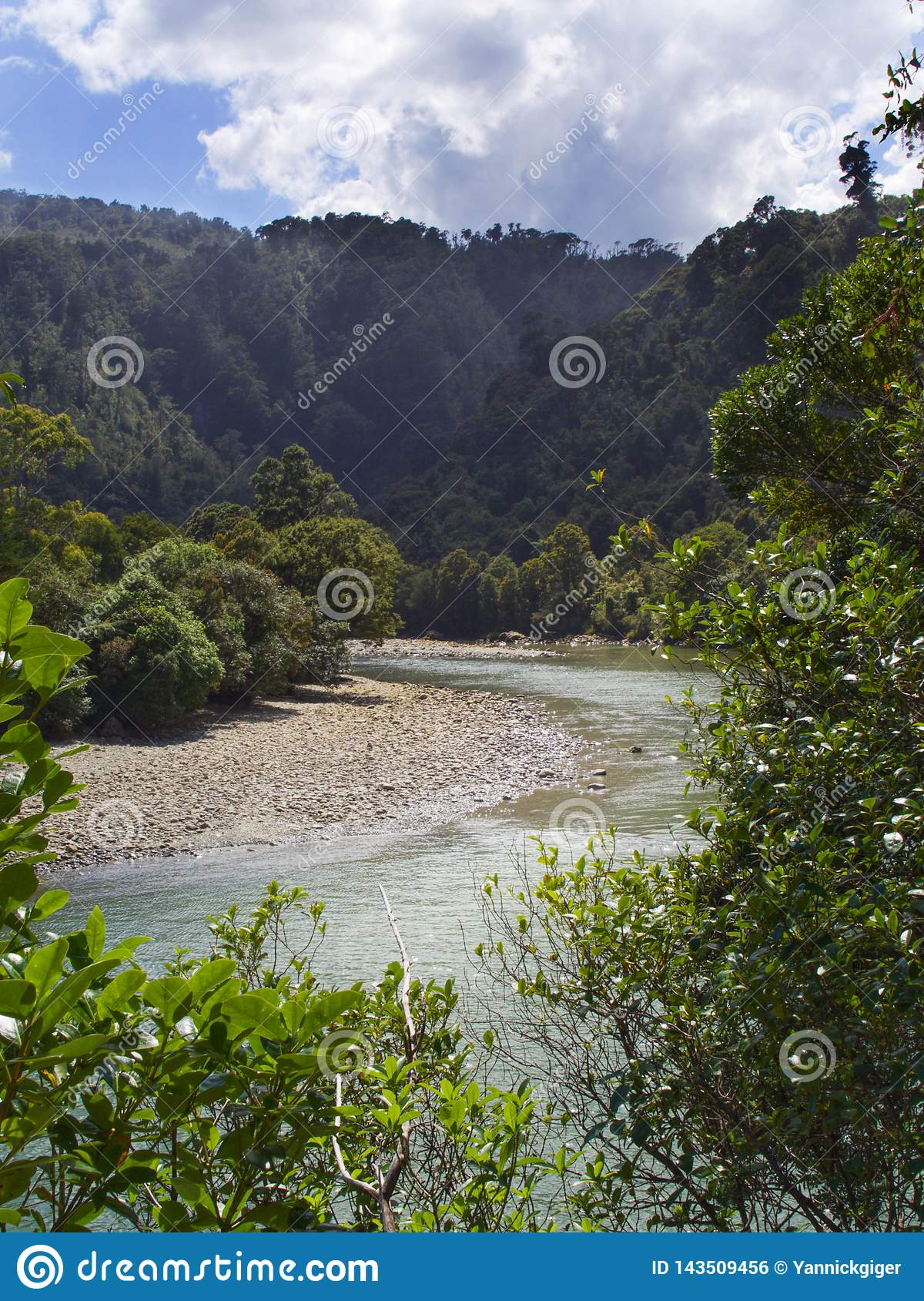 River bends and curves through forested wilderness in New Zealand
