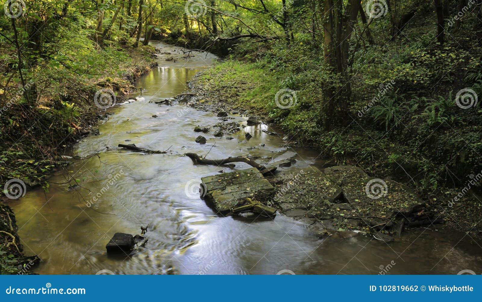 River Boyd