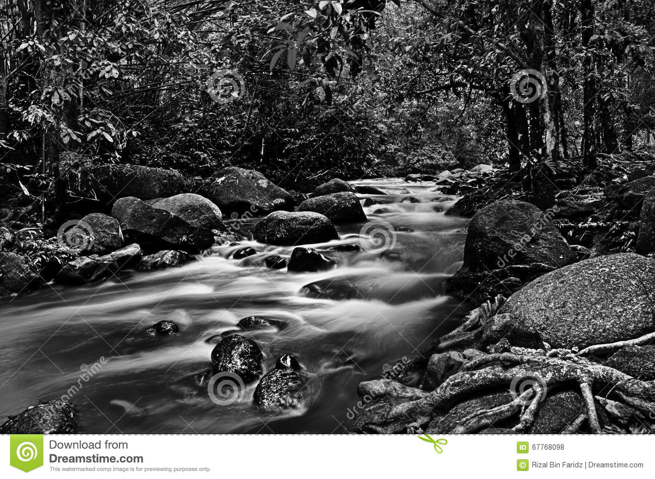 River down stream in black and white