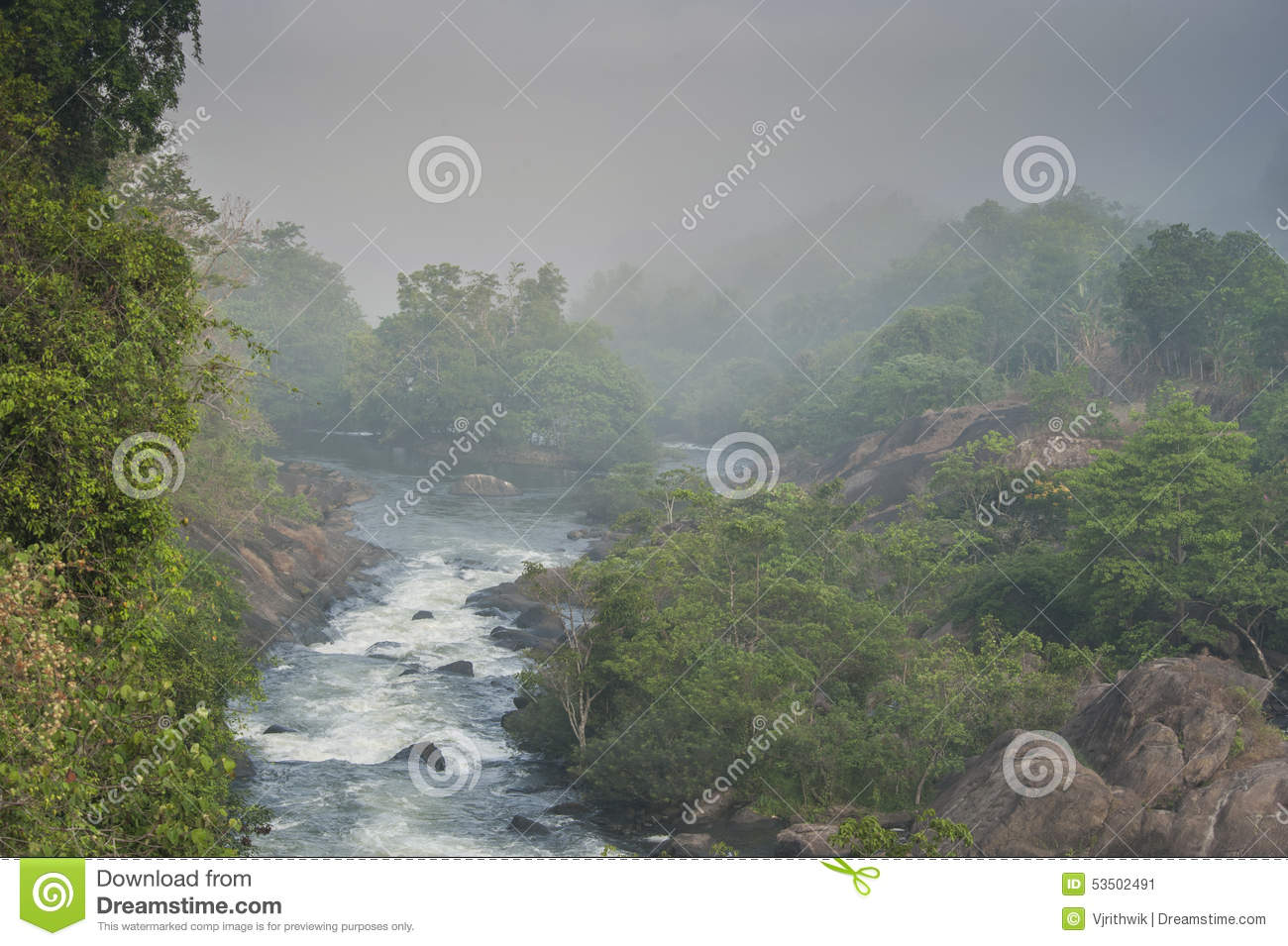 Misty Green Forest Nature River Beautiful 1ziw: River In A Forest Stock Photo