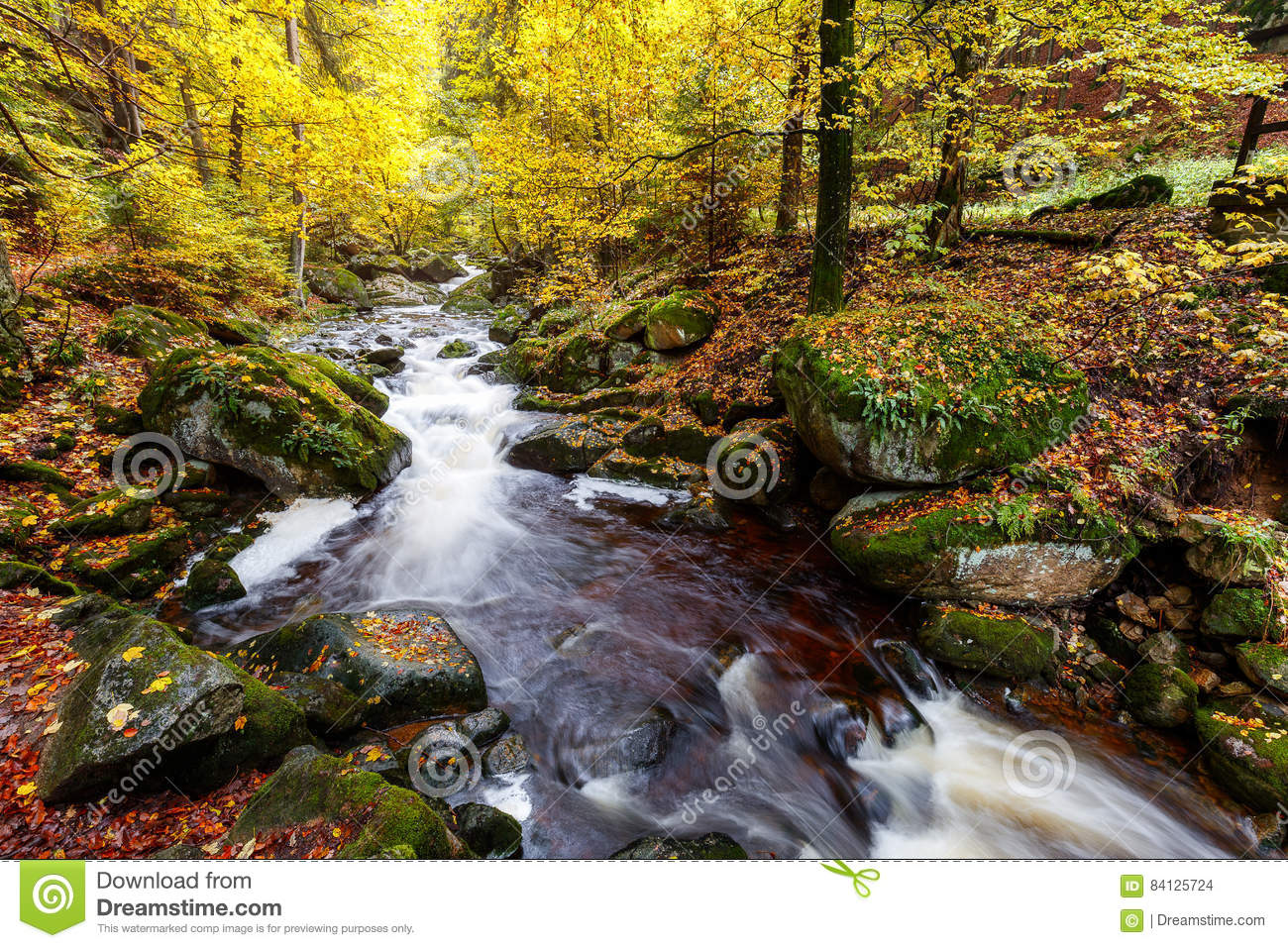 River Ilse at the Harz stock photo  Image of current - 84125724
