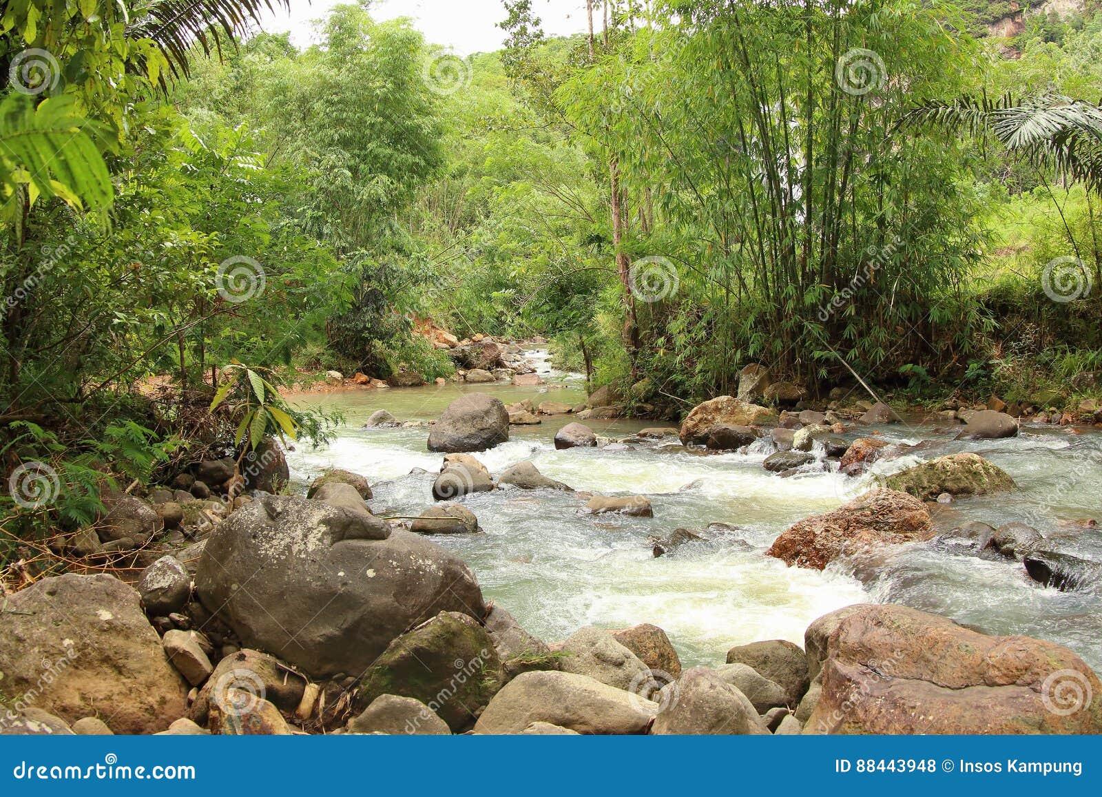 River in Labuan Bajo