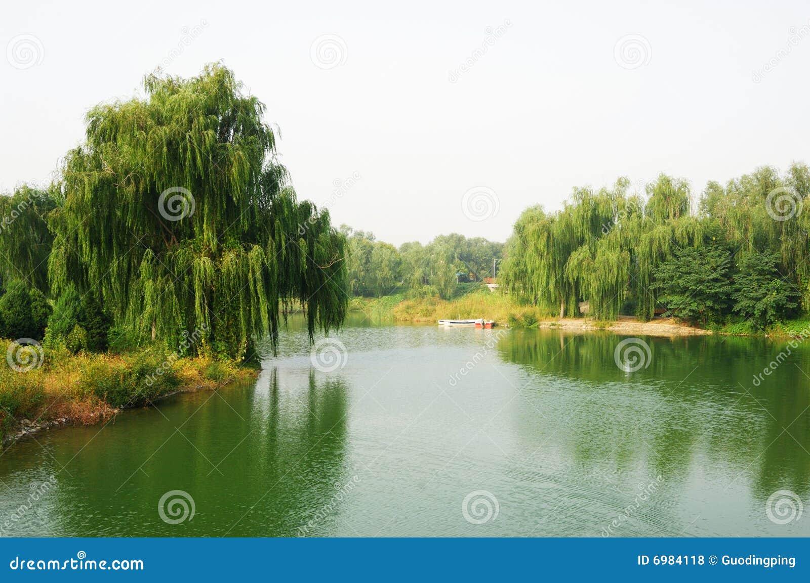 River in park