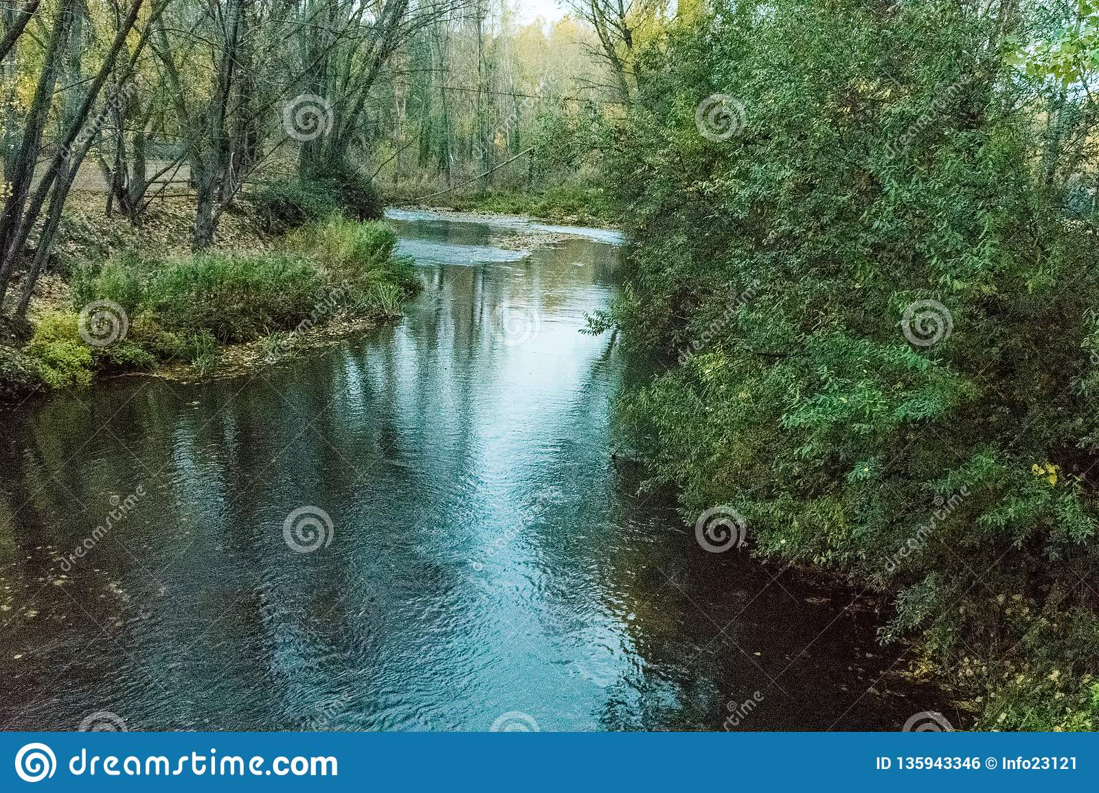 River when passing through town with leafy margins