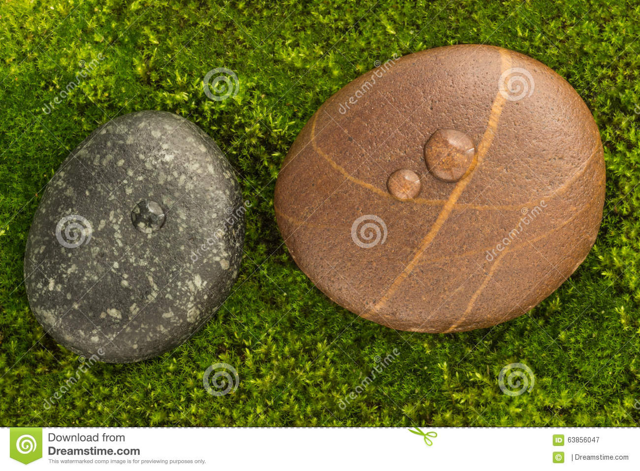 The River Stones spa treatment scene with raindrop on moss background zen like concepts.