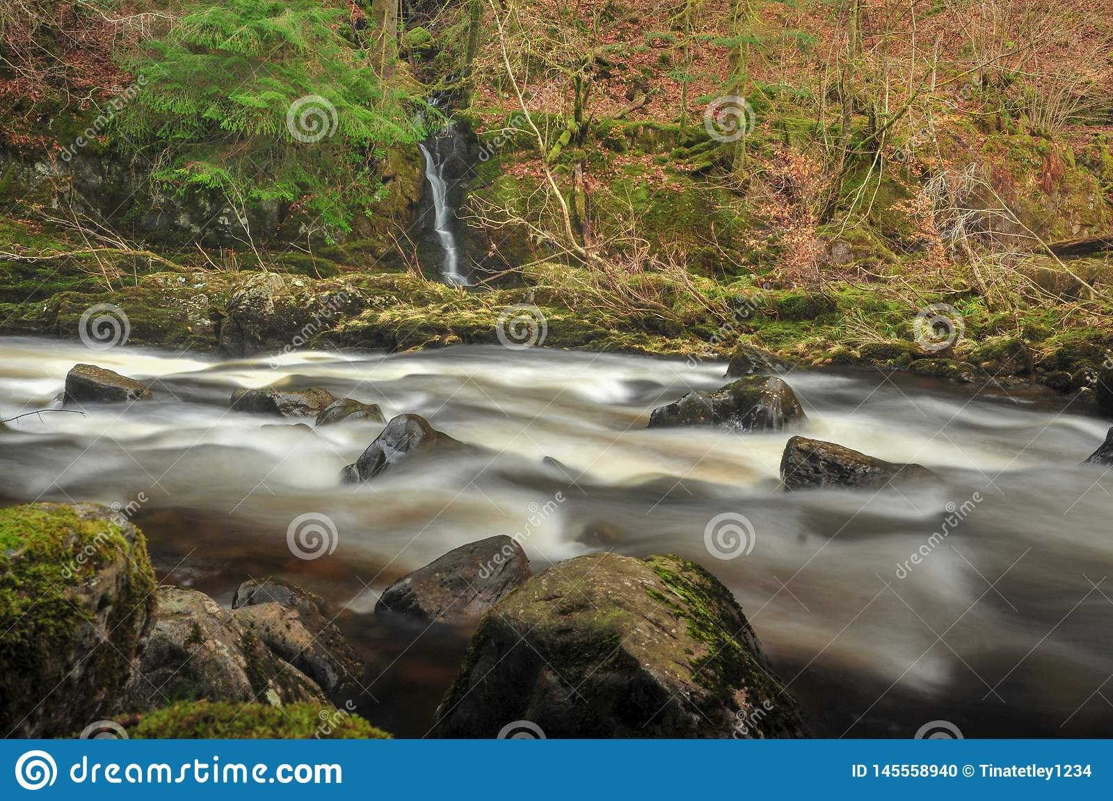 The River Tay at The Hermitage, Dunkeld in Scotland
