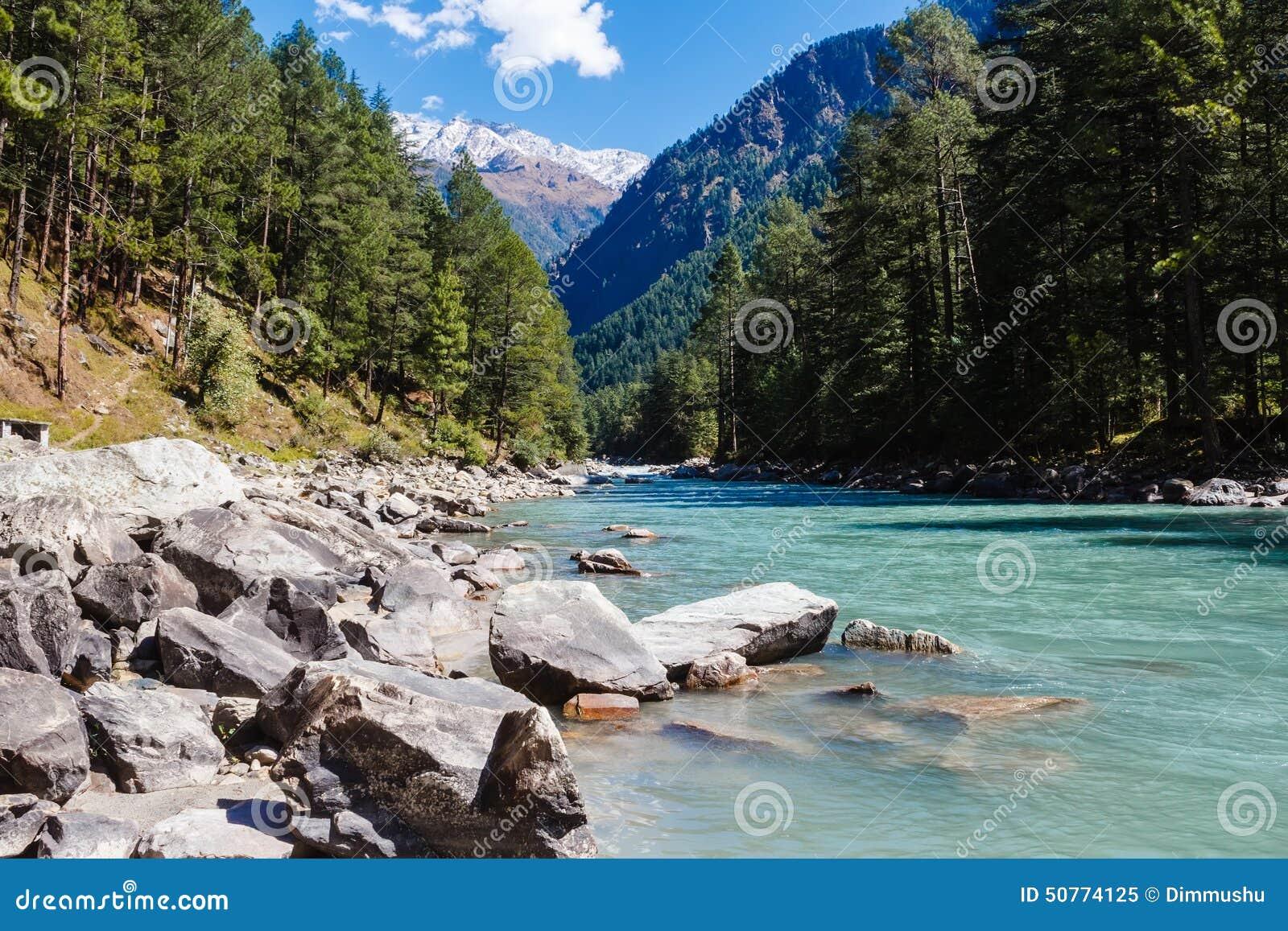 River Valley dans les montagnes couvertes de forêt