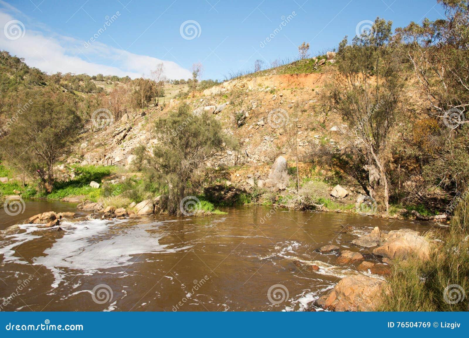 Riverbank de los rápidos de Bell