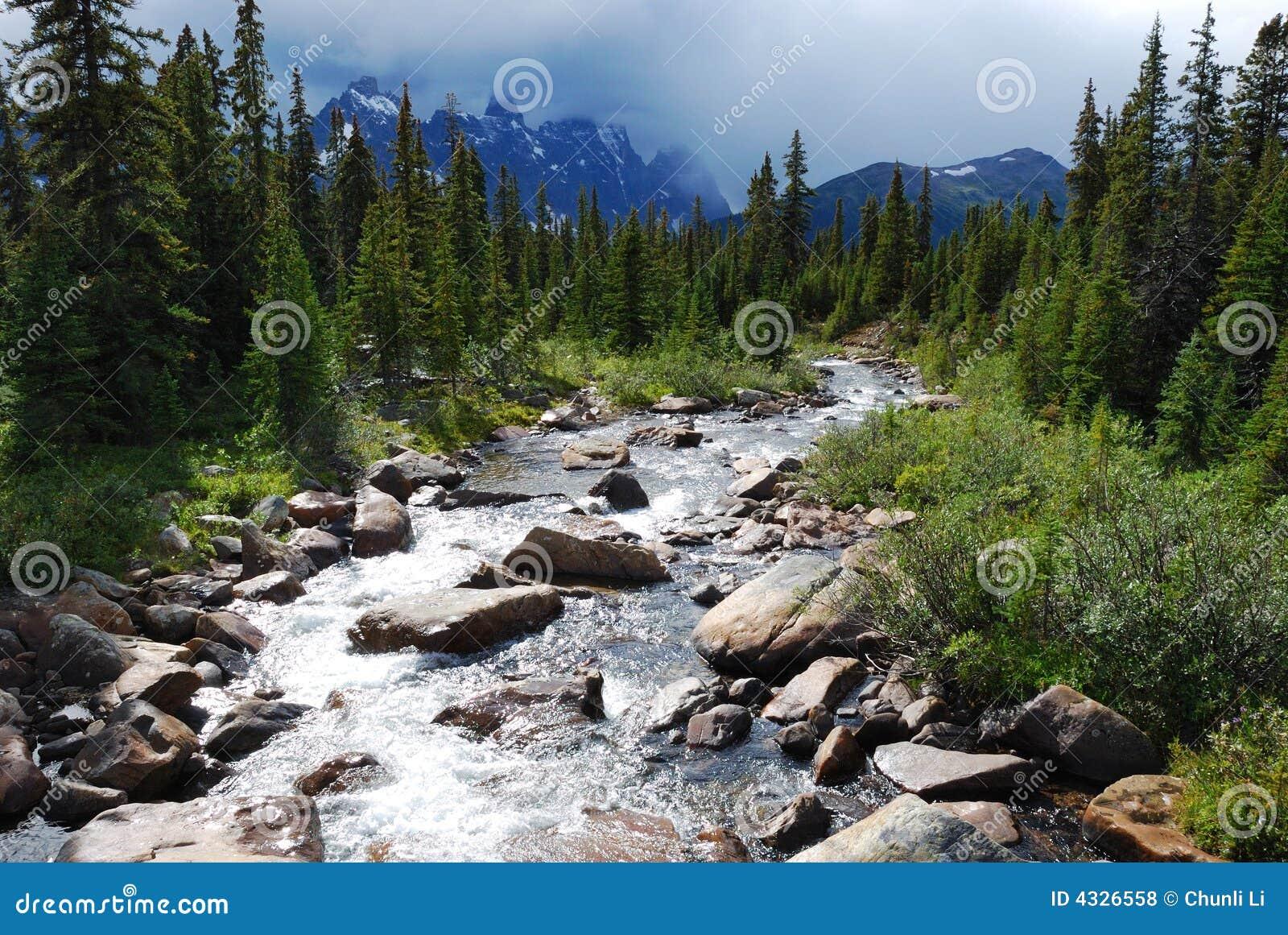 Rivers in Rockies