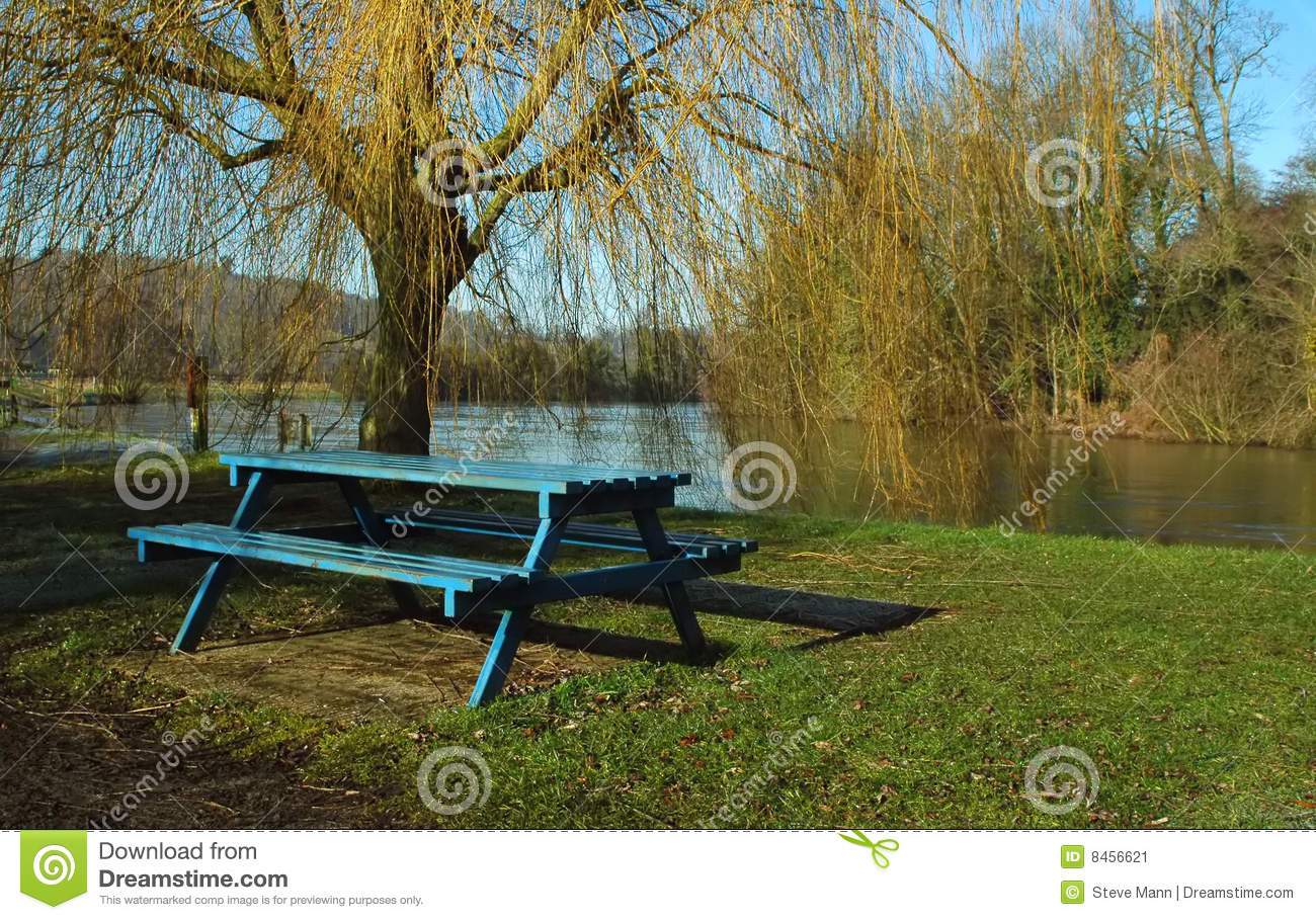 picnic by river side in india Round island riverside park is located at 2200 south a1a, at the indian river/st   boat ramp & boat parking, childrens' playground, two picnic pavilions, canoe.