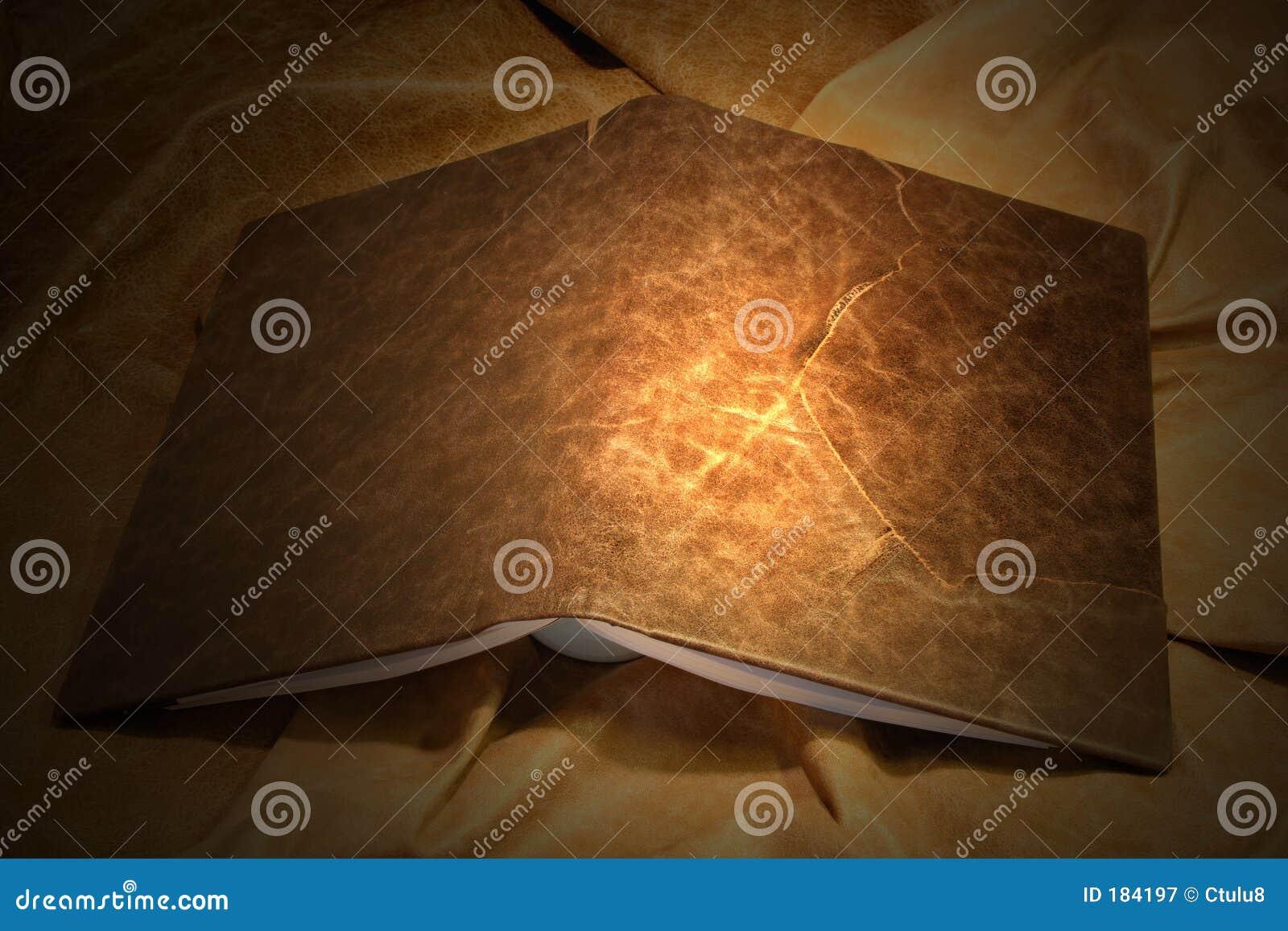 Rivesta di pelle la copertina di libro