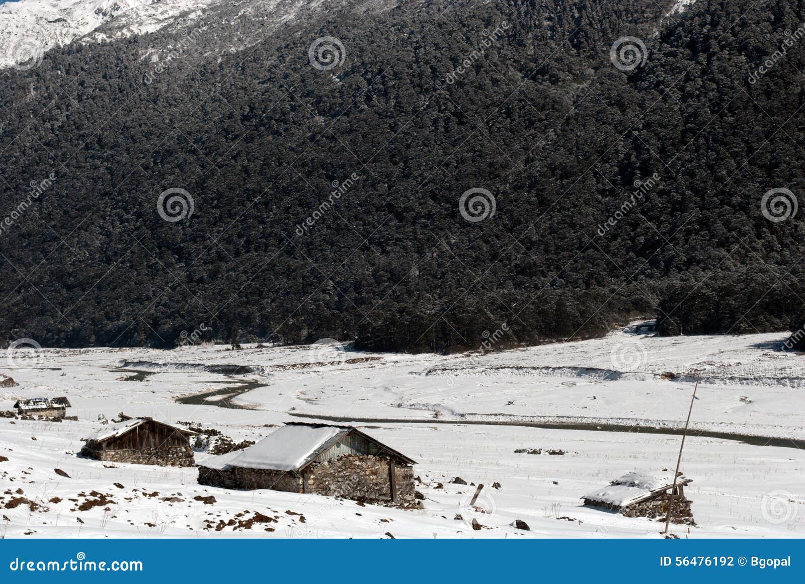 Rivière à la vallée de Yumthang