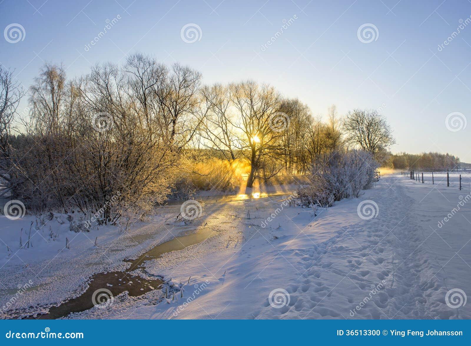 Rivière congelée dans le paysage d hiver