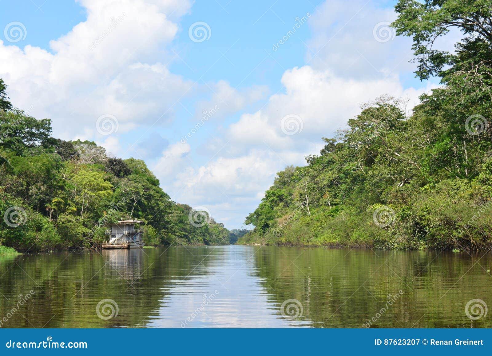 Rivière dans la jungle d Amazone, Pérou