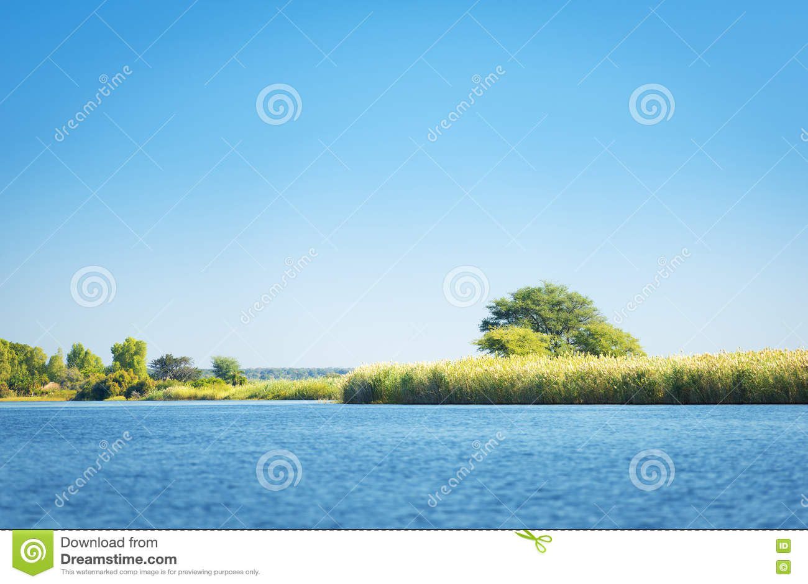Rivière de Chobe