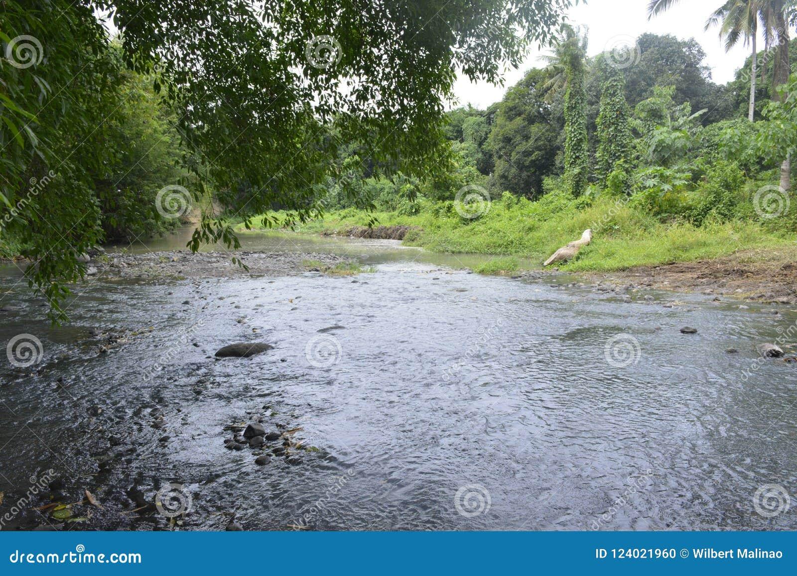 Rivière de Tiguman chez Tiguman barangay, ville de Digos, Davao del Sur, Philippines