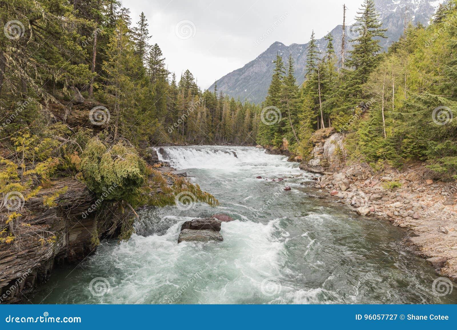 Rivière de Whitewater en parc national de glacier
