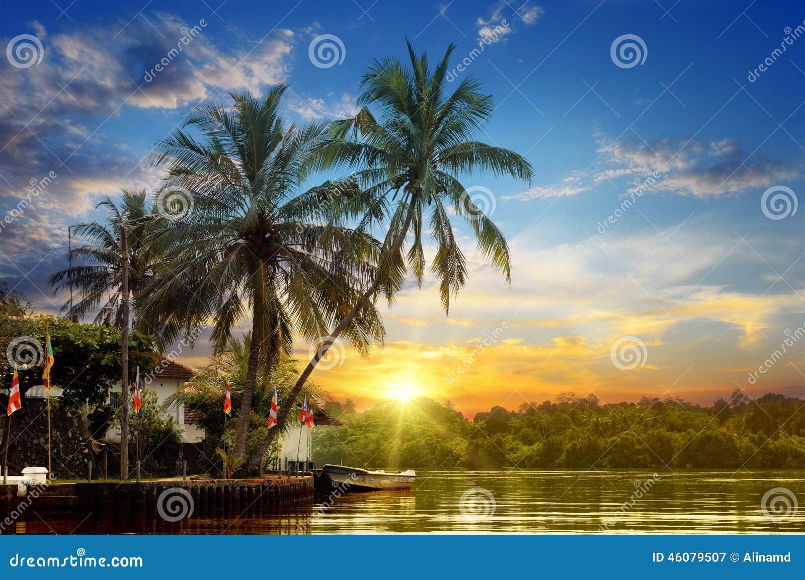 Rivière et beau lever de soleil