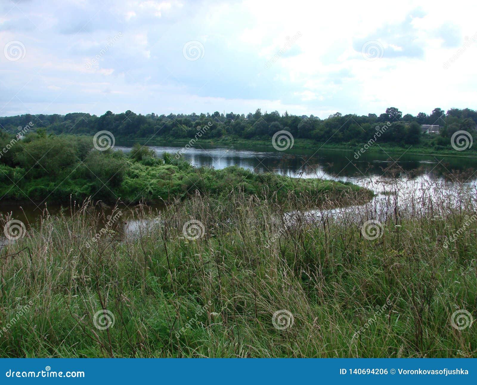 Rivière occidentale de Dvina au Belarus
