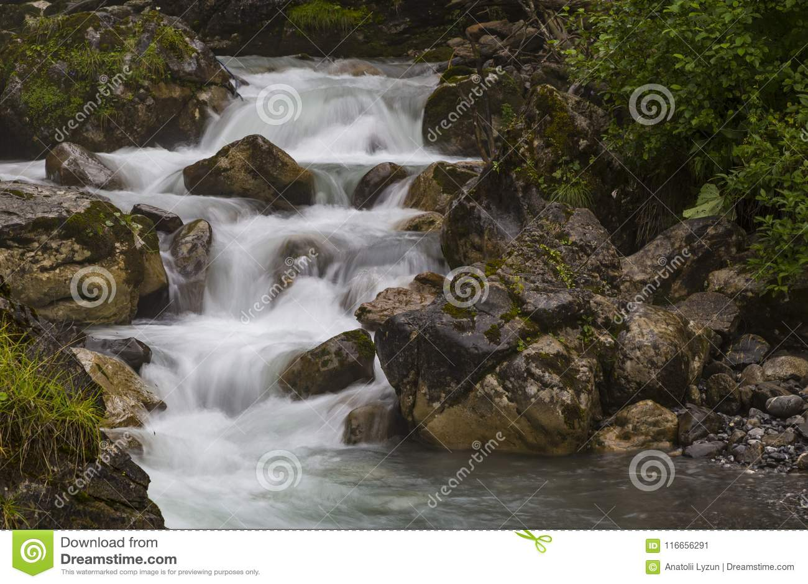Rivière rapide de montagne à l été