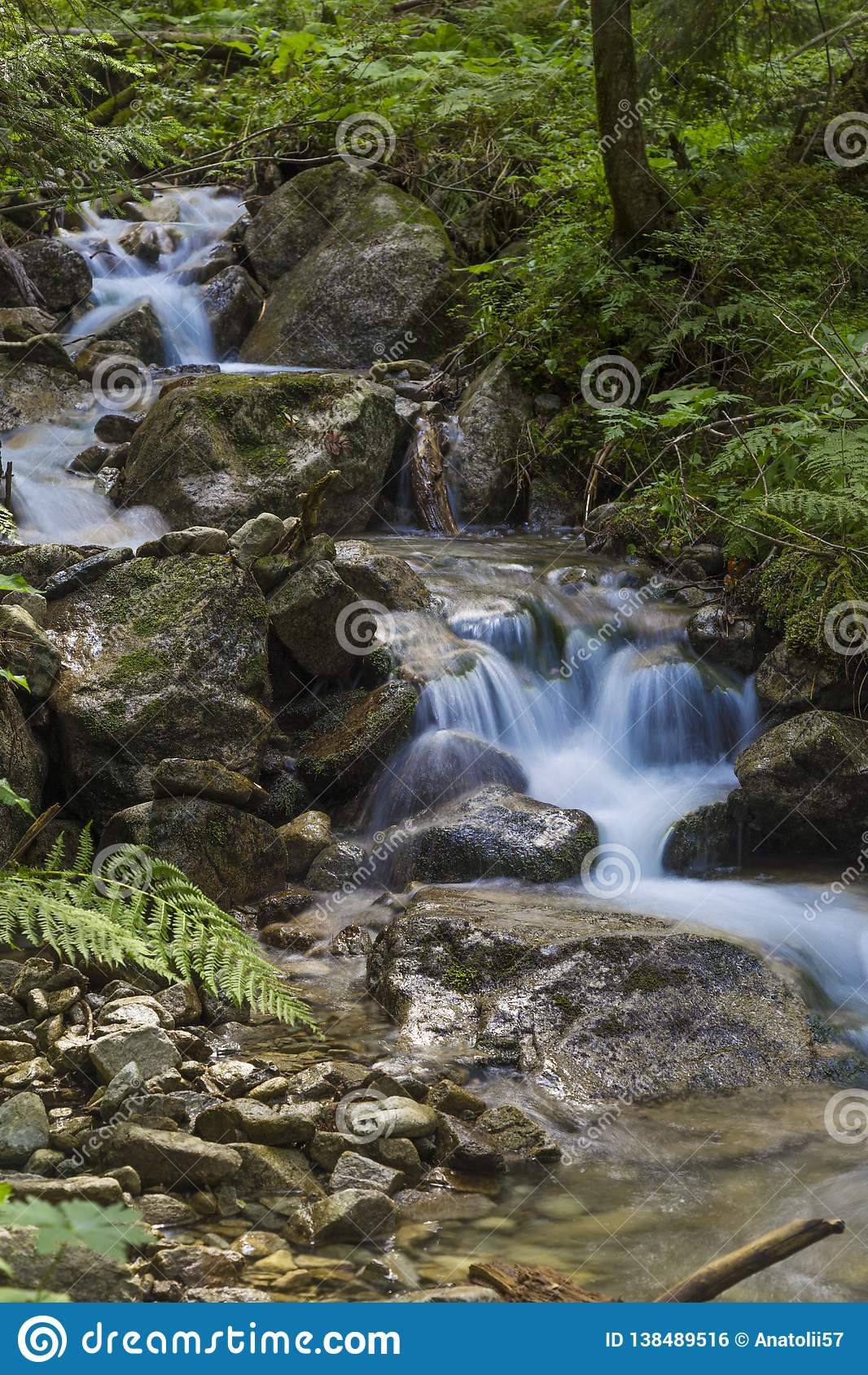 Rivière rapide de montagne coulant parmi les pierres moussues