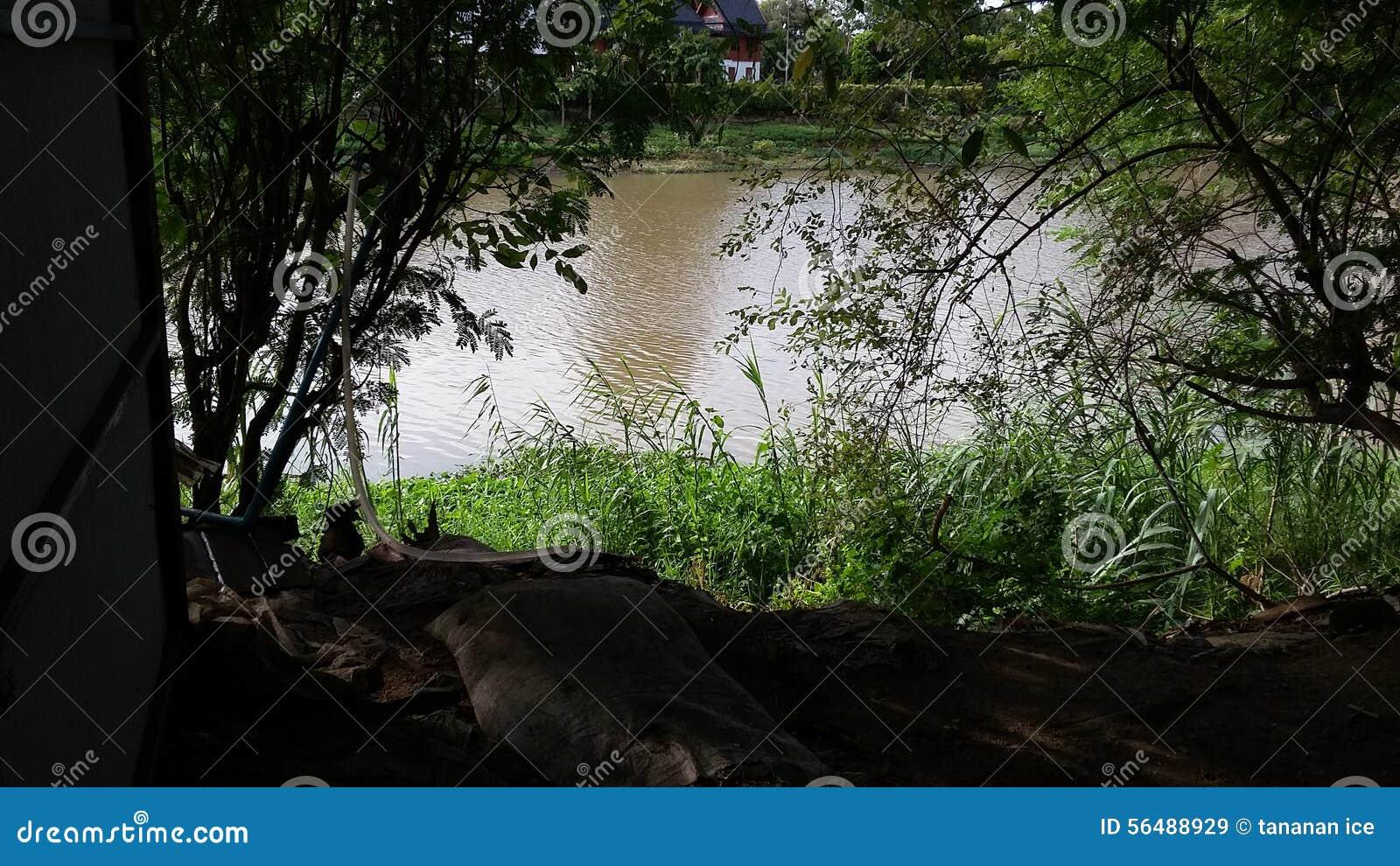Rivière Thaïlande de cinglement