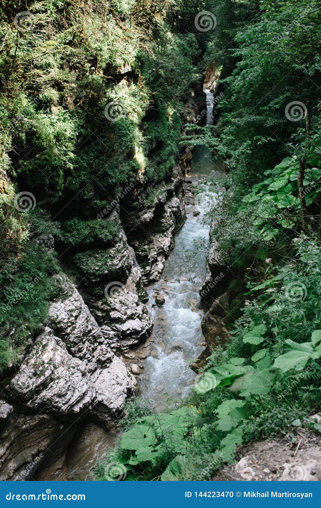 Rivier in de Kloof van Guam, Krasnodar-Grondgebied, Rusland Het bed van de bergrivier van de Bergen van de Kaukasus