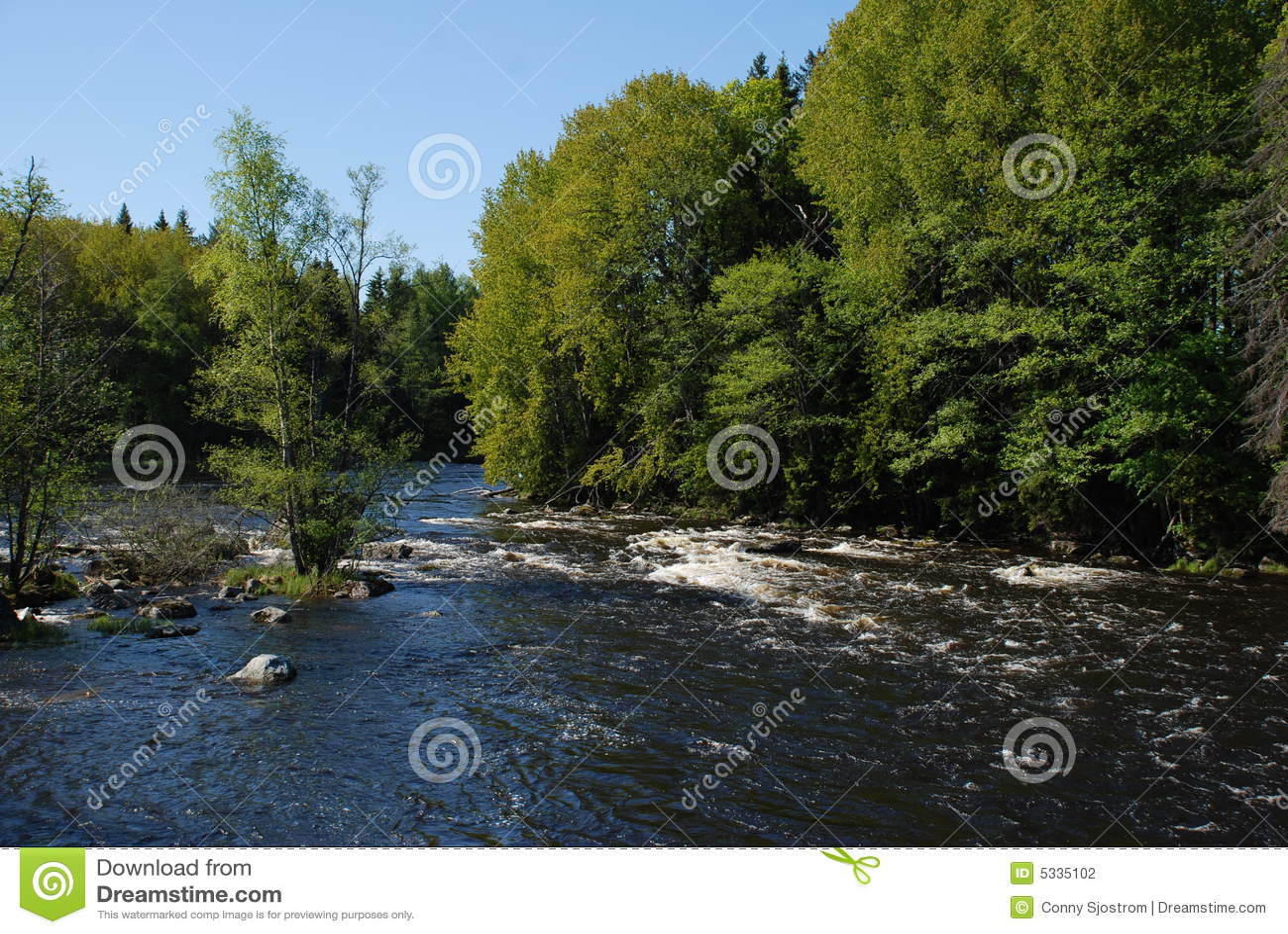 Rivier die in de Lente stroomt