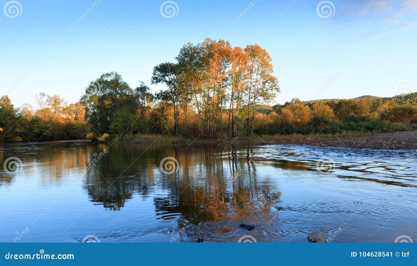 Download Rivier en de herfstbos stock afbeelding. Afbeelding bestaande uit openlucht - 104628541