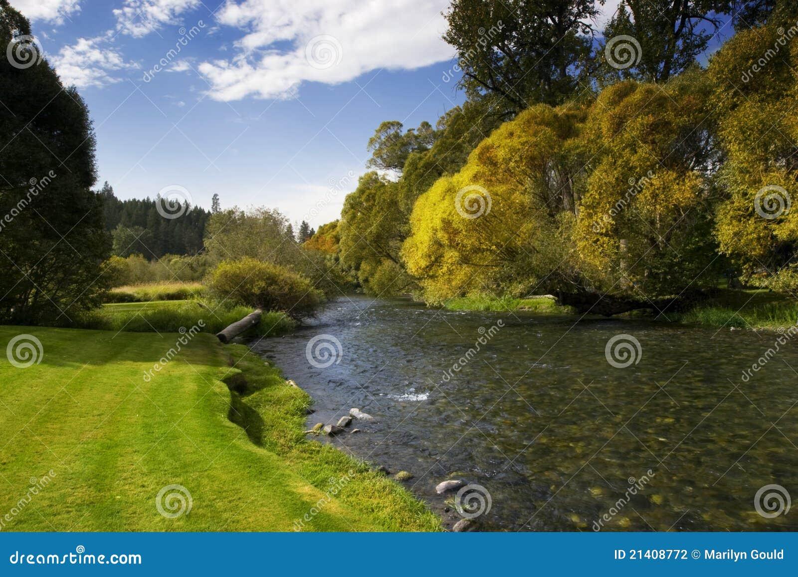 Rivier met Blauwe Hemel en Bomen