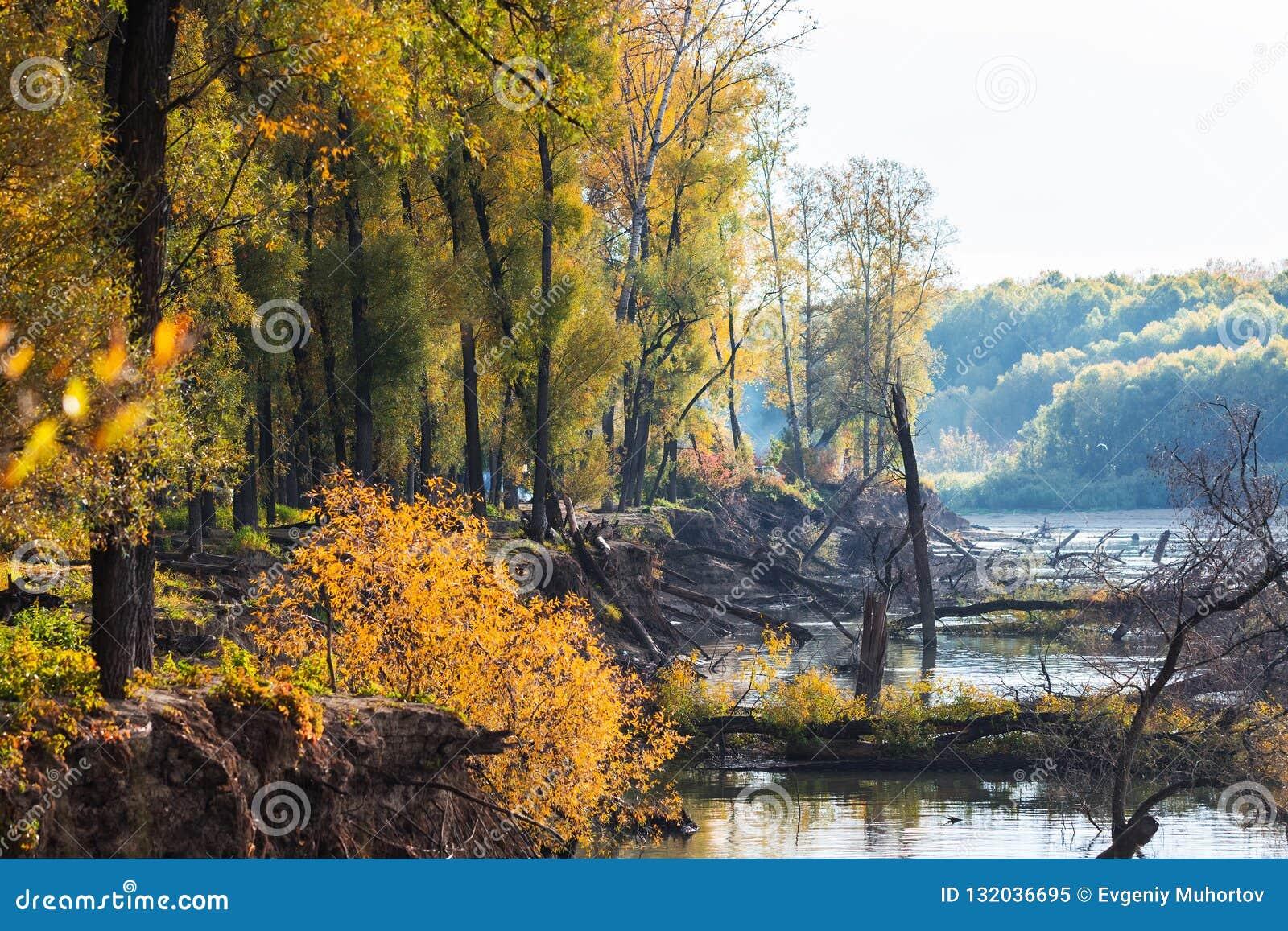 Rivier Ob, de herfst Westelijk Siberië, het gebied van Novosibirsk, Suzun