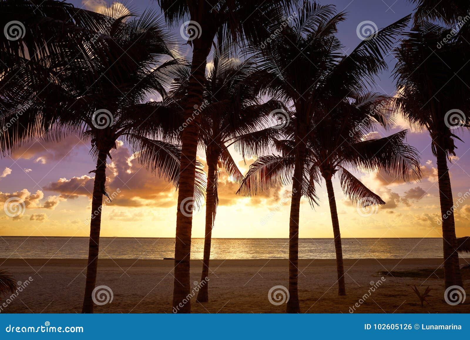 Riviera Maya sunrise beach in Mexico