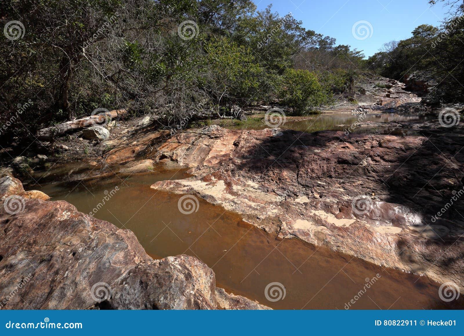 Rivierlandschap van Caatinga in Brazilië