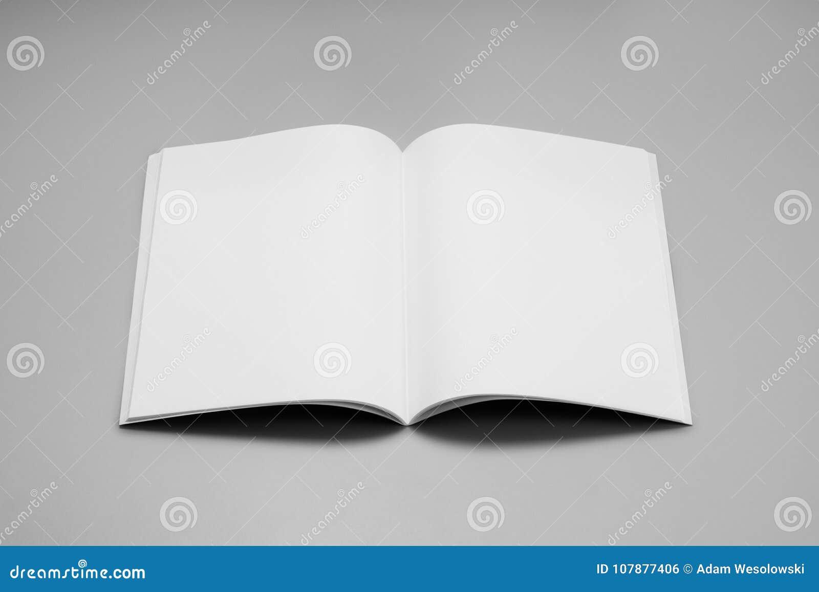 Riviste, libro o catalogo del modello sul fondo grigio della tavola