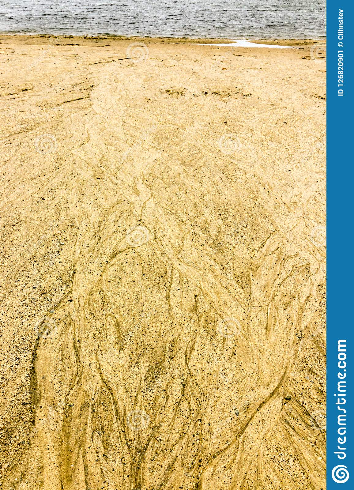 Rivulets in beach sand stock image  Image of streams - 126820901