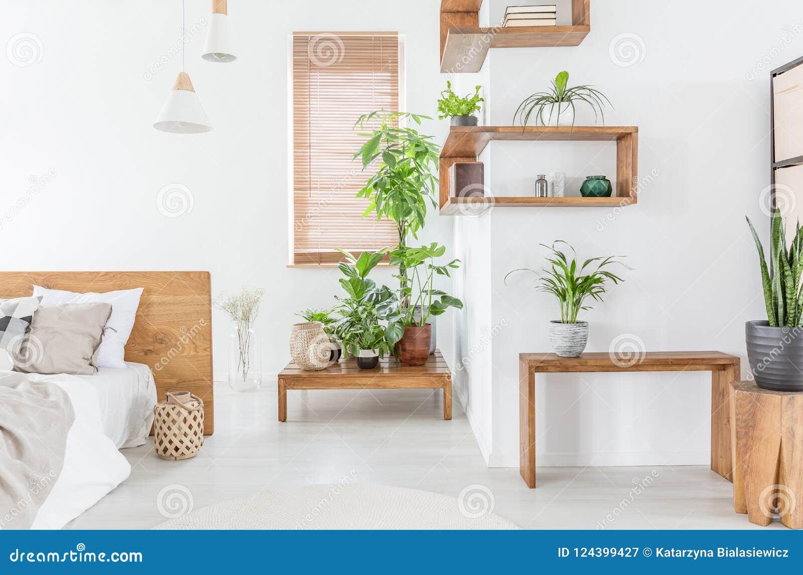 Rośliny Na Drewnianym Stole W Białym Sypialni Wnętrzu Z