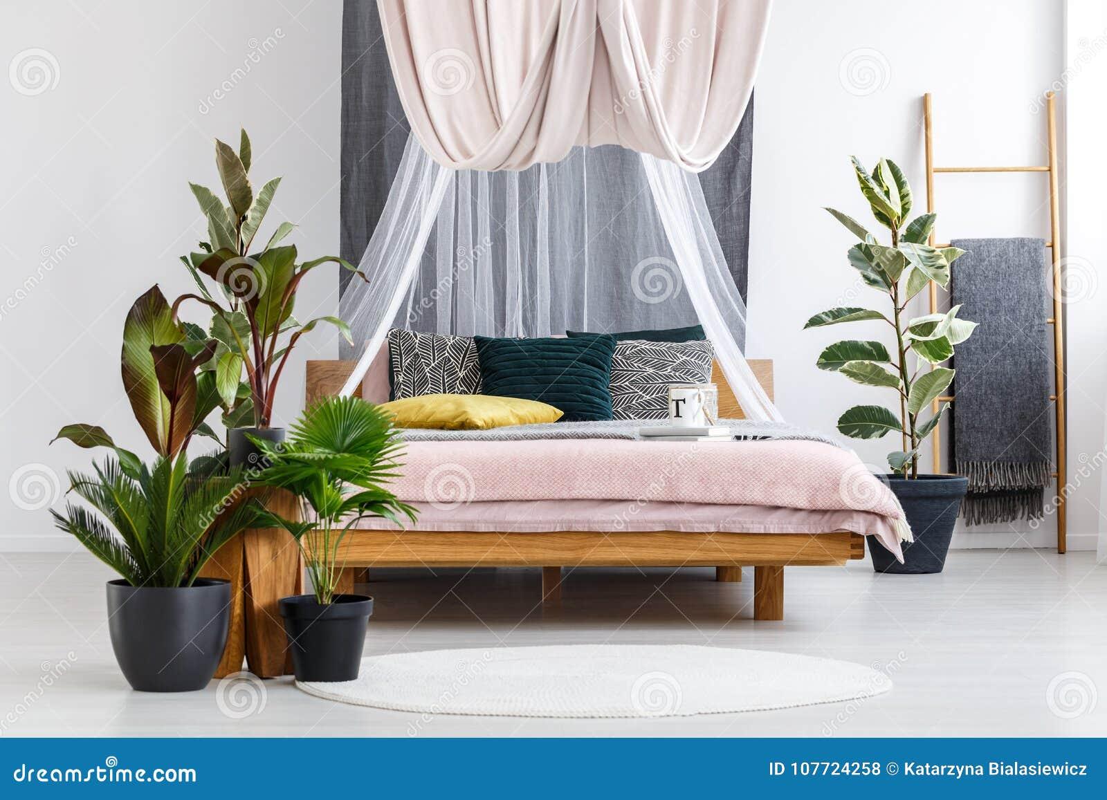 Rośliny W Pastelowym Sypialni Wnętrzu Zdjęcie Stock Obraz