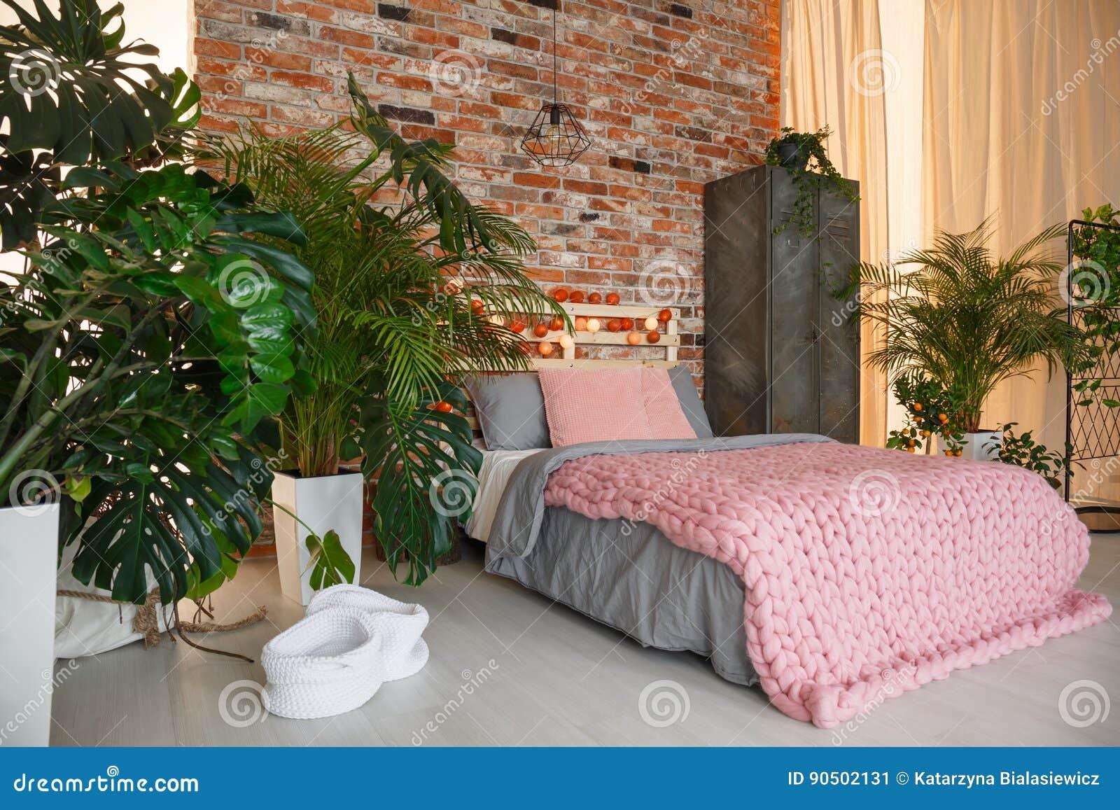 Rośliny W Sypialni Obraz Stock Obraz Złożonej Z Zasłona