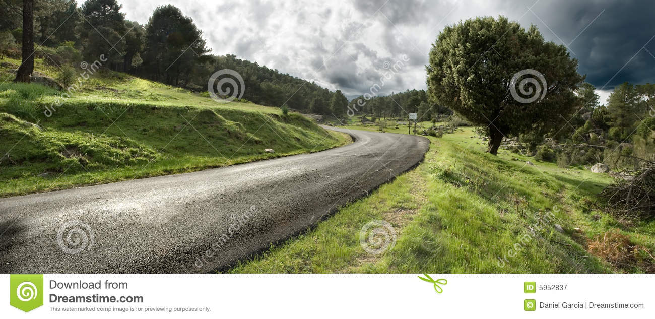 Download Road in the forest stock image. Image of environmental - 5952837
