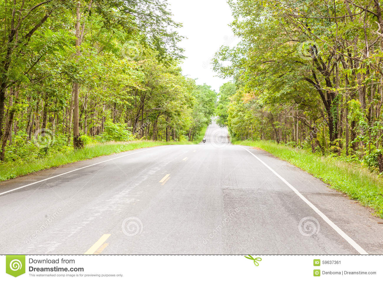 Uthai Thani Thailand  city pictures gallery : road forest uthai thani thailand 59637361