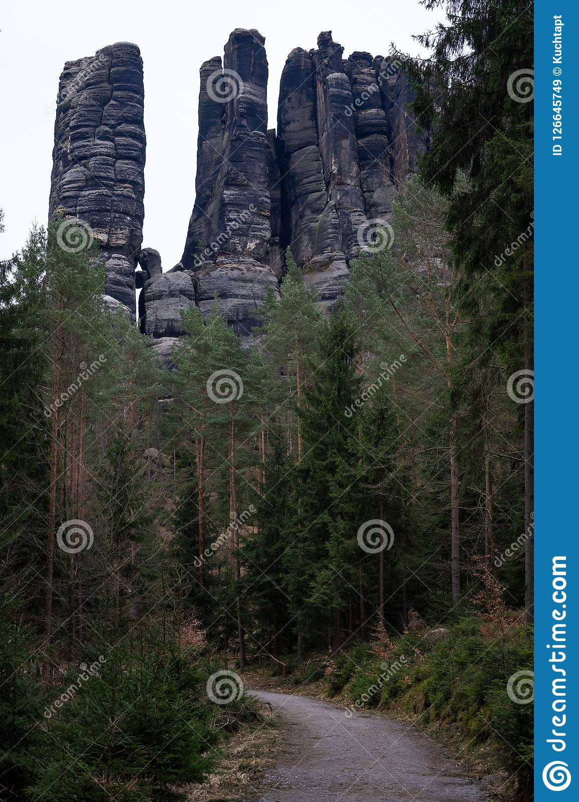 The road with sandstones landscape. Empty road in deep forest in Saxon Switzerland. Behind the road is sandstone rocks Royalty Free Stock Images