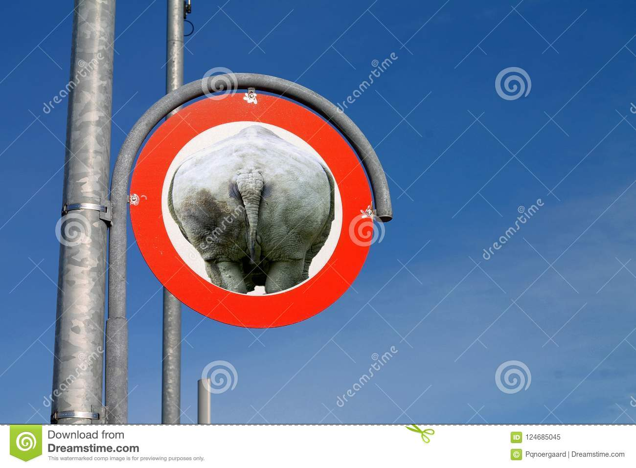 Road sign with of a rhino stock image  Image of license