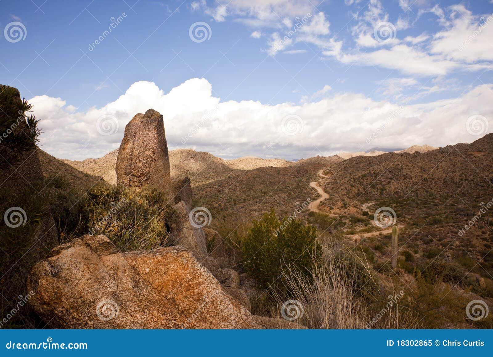 Road to Arizona s Four Peaks Wilderness